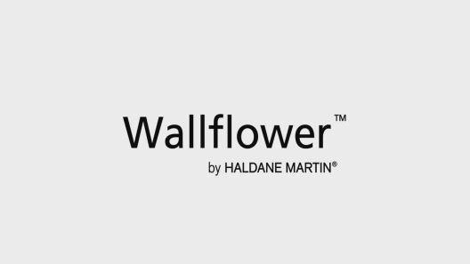 Seeing Differently: A Wallflower Urban Garden